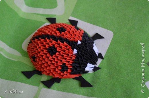 Картина панно рисунок Мастер-класс Оригами китайское модульное Божья коровка или сонечко-жучок Бумага Клей фото 14