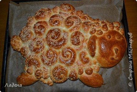 Кулинария Мастер-класс Вкусная овечка Овощи фрукты ягоды Продукты пищевые Тесто для выпечки фото 1
