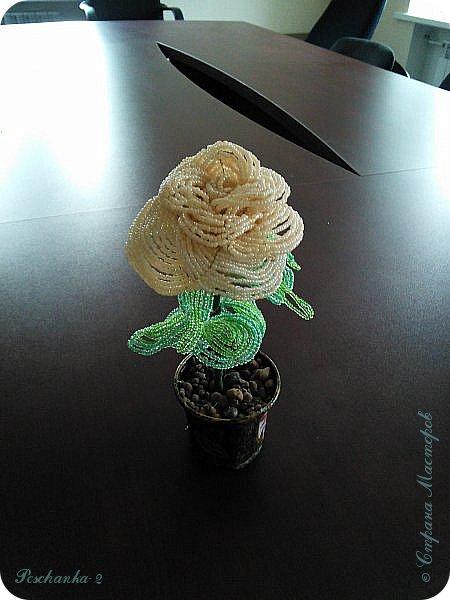 Моя первая бисерная роза фото 3