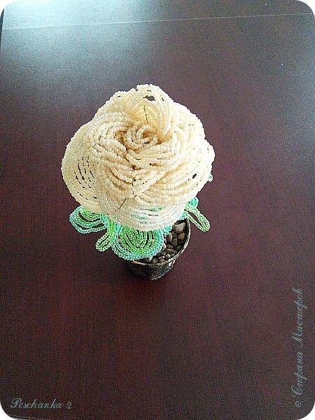 Моя первая бисерная роза фото 5