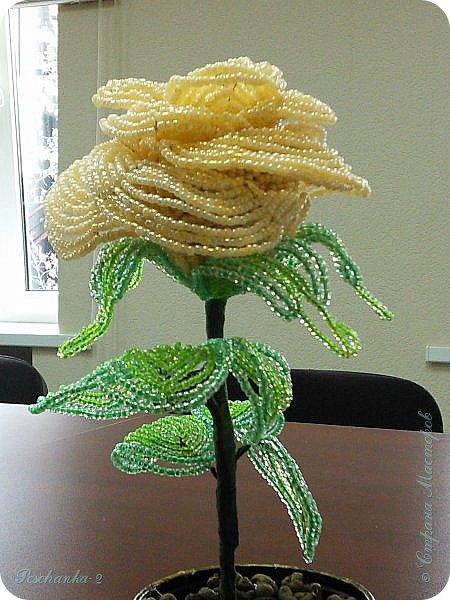 Моя первая бисерная роза фото 2