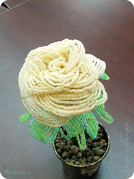 Моя первая бисерная роза