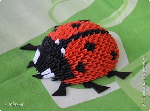 Картина панно рисунок Мастер-класс Оригами китайское модульное Божья коровка или сонечко-жучок Бумага Клей фото 15