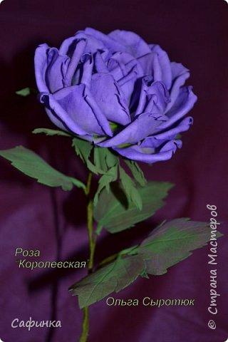 Мастер-класс Моделирование конструирование Мастер-класс по созданию розы  Королевская из Фоама  Фоамиран фом  1