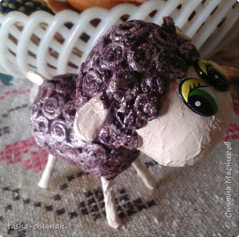 И у меня теперь есть символ нового года! Моя овечка Соня! фото 3