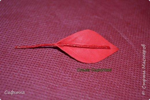 Привет всем!!! и вот..снова я,Ольга Сыротюк с Вами...  Скоро Новый год и Рождество...Пора задуматься о подарках и украшениях к самым чудесным и  волшебным праздникам....А вы уже готовите подарки себе и близким? Если нет...то я предлагаю сегодня вместе с вами создать волшебный рождественский цветок... Вдохновение на создание этого цветка,я получила на онлайн-конференции от Марины Мартьяновой....Мариночка,спасибо )))) И вот,пока вдохновение не покинуло, решила создать МК Пуансетии для вас мои дорогие...пыталась приблизится к реальности цветка И так кому интересно, и уже загорелся...в бой  фото 11