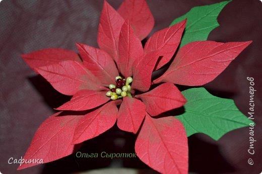 Привет всем!!! и вот..снова я,Ольга Сыротюк с Вами...  Скоро Новый год и Рождество...Пора задуматься о подарках и украшениях к самым чудесным и  волшебным праздникам....А вы уже готовите подарки себе и близким? Если нет...то я предлагаю сегодня вместе с вами создать волшебный рождественский цветок... Вдохновение на создание этого цветка,я получила на онлайн-конференции от Марины Мартьяновой....Мариночка,спасибо )))) И вот,пока вдохновение не покинуло, решила создать МК Пуансетии для вас мои дорогие...пыталась приблизится к реальности цветка И так кому интересно, и уже загорелся...в бой  фото 18