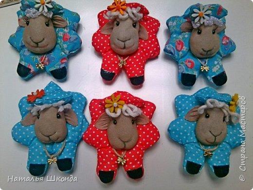 мои овечки фото 1
