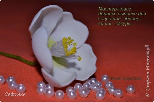 Мастер-класс Моделирование конструирование Мастер-класс  Делаем тычинки для соцветий яблони и сакуры   Крупа фото 1