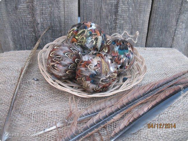 Давно хотела сделать такие вот необычные новогодние шары. Такая палитра красок никого не может оставить равнодушным.Природа постаралась наряжая птиц..Давно коллекционирую перья птиц и вот сделала такие  волшебные шары. Конечно фото не может передать всей красоты и всех переливов природных красок. Надеюсь что вы полюбуетесь вместе со мной , таким эко нарядом. фото 4