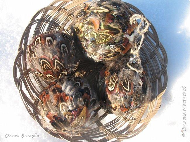 Давно хотела сделать такие вот необычные новогодние шары. Такая палитра красок никого не может оставить равнодушным.Природа постаралась наряжая птиц..Давно коллекционирую перья птиц и вот сделала такие  волшебные шары. Конечно фото не может передать всей красоты и всех переливов природных красок. Надеюсь что вы полюбуетесь вместе со мной , таким эко нарядом. фото 7