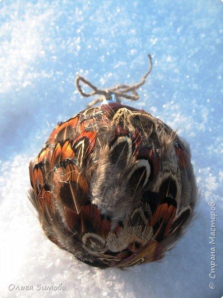 Давно хотела сделать такие вот необычные новогодние шары. Такая палитра красок никого не может оставить равнодушным.Природа постаралась наряжая птиц..Давно коллекционирую перья птиц и вот сделала такие  волшебные шары. Конечно фото не может передать всей красоты и всех переливов природных красок. Надеюсь что вы полюбуетесь вместе со мной , таким эко нарядом. фото 8