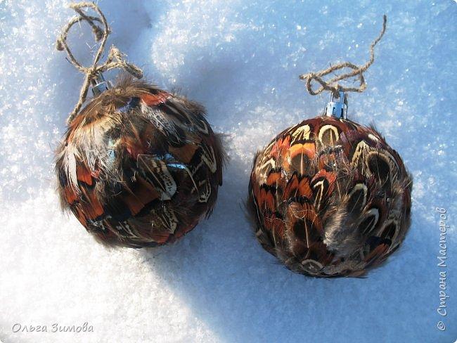 Давно хотела сделать такие вот необычные новогодние шары. Такая палитра красок никого не может оставить равнодушным.Природа постаралась наряжая птиц..Давно коллекционирую перья птиц и вот сделала такие  волшебные шары. Конечно фото не может передать всей красоты и всех переливов природных красок. Надеюсь что вы полюбуетесь вместе со мной , таким эко нарядом. фото 9