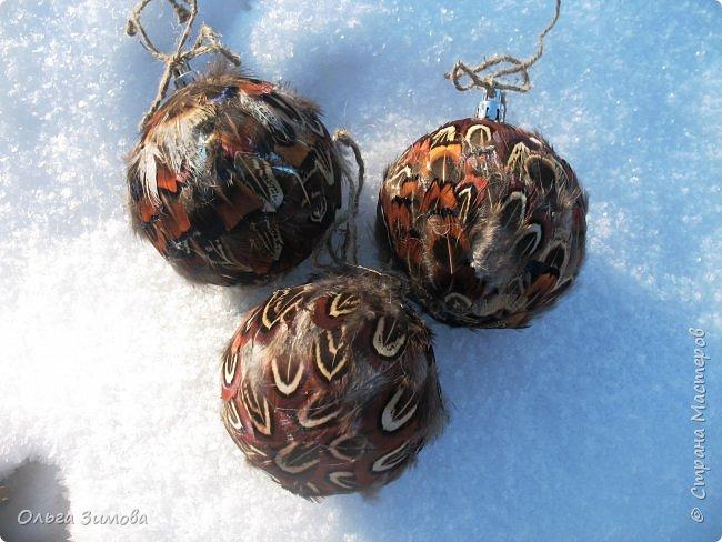 Давно хотела сделать такие вот необычные новогодние шары. Такая палитра красок никого не может оставить равнодушным.Природа постаралась наряжая птиц..Давно коллекционирую перья птиц и вот сделала такие  волшебные шары. Конечно фото не может передать всей красоты и всех переливов природных красок. Надеюсь что вы полюбуетесь вместе со мной , таким эко нарядом. фото 10