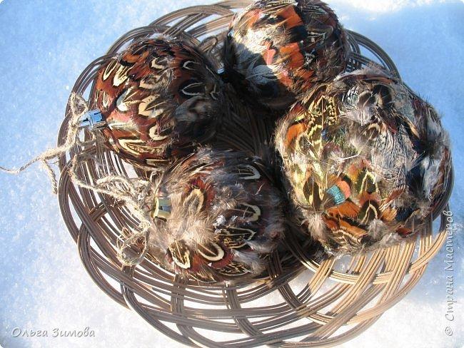 Давно хотела сделать такие вот необычные новогодние шары. Такая палитра красок никого не может оставить равнодушным.Природа постаралась наряжая птиц..Давно коллекционирую перья птиц и вот сделала такие  волшебные шары. Конечно фото не может передать всей красоты и всех переливов природных красок. Надеюсь что вы полюбуетесь вместе со мной , таким эко нарядом. фото 15