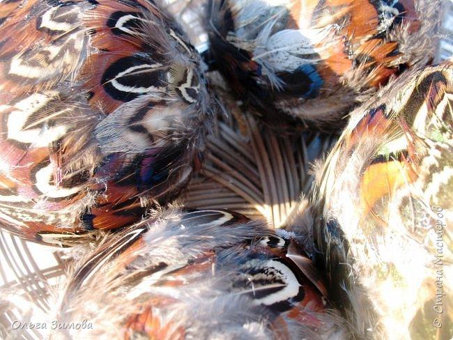 Давно хотела сделать такие вот необычные новогодние шары. Такая палитра красок никого не может оставить равнодушным.Природа постаралась наряжая птиц..Давно коллекционирую перья птиц и вот сделала такие  волшебные шары. Конечно фото не может передать всей красоты и всех переливов природных красок. Надеюсь что вы полюбуетесь вместе со мной , таким эко нарядом. фото 14