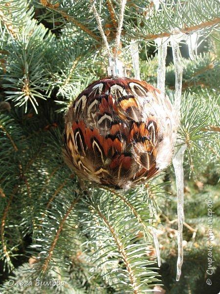 Давно хотела сделать такие вот необычные новогодние шары. Такая палитра красок никого не может оставить равнодушным.Природа постаралась наряжая птиц..Давно коллекционирую перья птиц и вот сделала такие  волшебные шары. Конечно фото не может передать всей красоты и всех переливов природных красок. Надеюсь что вы полюбуетесь вместе со мной , таким эко нарядом. фото 17