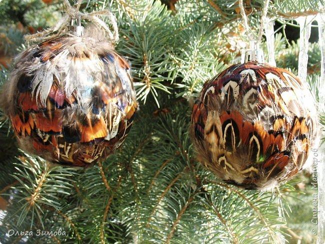 Давно хотела сделать такие вот необычные новогодние шары. Такая палитра красок никого не может оставить равнодушным.Природа постаралась наряжая птиц..Давно коллекционирую перья птиц и вот сделала такие  волшебные шары. Конечно фото не может передать всей красоты и всех переливов природных красок. Надеюсь что вы полюбуетесь вместе со мной , таким эко нарядом. фото 18