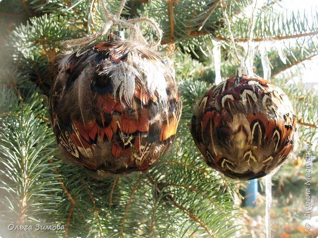 Давно хотела сделать такие вот необычные новогодние шары. Такая палитра красок никого не может оставить равнодушным.Природа постаралась наряжая птиц..Давно коллекционирую перья птиц и вот сделала такие  волшебные шары. Конечно фото не может передать всей красоты и всех переливов природных красок. Надеюсь что вы полюбуетесь вместе со мной , таким эко нарядом. фото 2