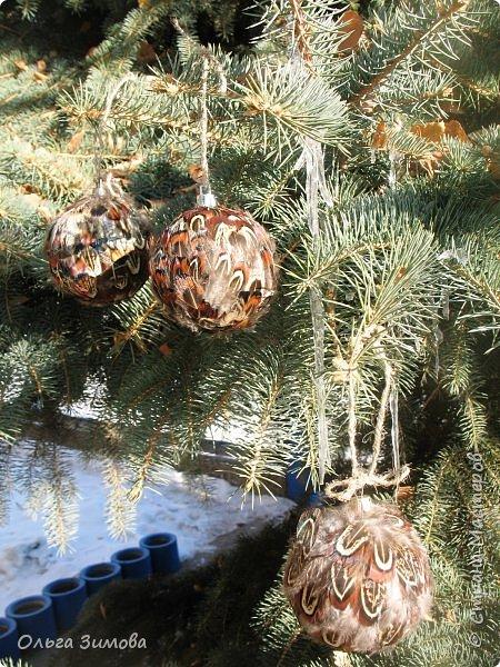 Давно хотела сделать такие вот необычные новогодние шары. Такая палитра красок никого не может оставить равнодушным.Природа постаралась наряжая птиц..Давно коллекционирую перья птиц и вот сделала такие  волшебные шары. Конечно фото не может передать всей красоты и всех переливов природных красок. Надеюсь что вы полюбуетесь вместе со мной , таким эко нарядом. фото 19