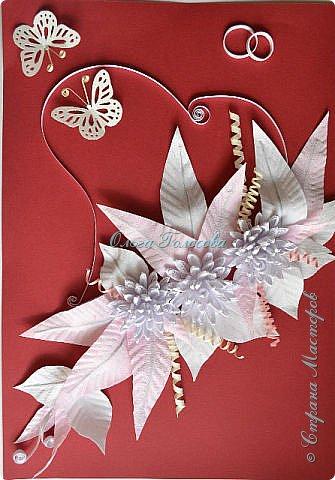 Вот такие пушистые хризантемы я делала для юбилейной открытки для мамы. http://stranamasterov.ru/node/836138 Идею мастер-класса подсказала Валентина Петровна. Возможно кому-то еще пригодится. фото 14