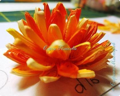 Вот такие пушистые хризантемы я делала для юбилейной открытки для мамы. http://stranamasterov.ru/node/836138 Идею мастер-класса подсказала Валентина Петровна. Возможно кому-то еще пригодится. фото 8