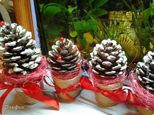 Вот такие маленькие подарочки к Новому году. Шишки привезли из Анапы, они от южных сосен, что с длинными иголками. И шишки больше по-размеру, чем наши.