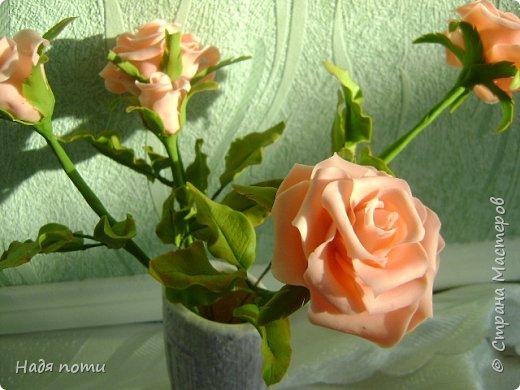 Очень хочу добиться схожести с натуральными цветочками.Девочки дайте свои замечания,что не так ,ведъ самой не все видно. фото 2