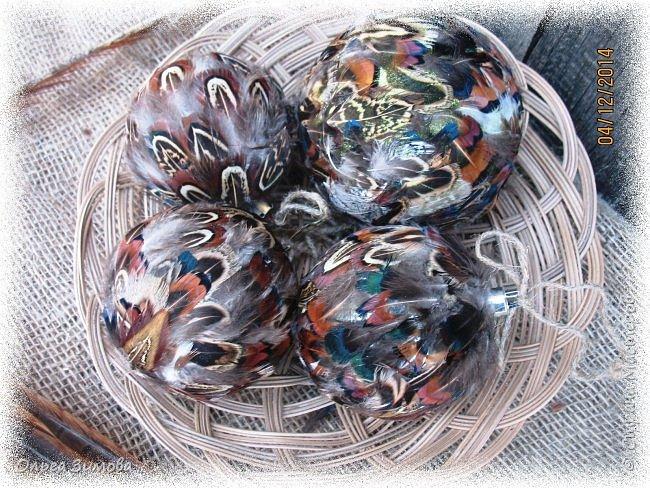 Давно хотела сделать такие вот необычные новогодние шары. Такая палитра красок никого не может оставить равнодушным.Природа постаралась наряжая птиц..Давно коллекционирую перья птиц и вот сделала такие  волшебные шары. Конечно фото не может передать всей красоты и всех переливов природных красок. Надеюсь что вы полюбуетесь вместе со мной , таким эко нарядом. фото 1