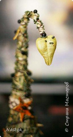 Вот такая елочка родилась у меня в этом году. Соломенная. Практически полностью из натуральных материалов. Ну, кроме бисера )))) и основы, на которую сено клеилось. И даже черные горошины - это семена неизвестного мне растения, коробочка которого приклеена к верхушке )) фото 2