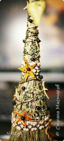 Вот такая елочка родилась у меня в этом году. Соломенная. Практически полностью из натуральных материалов. Ну, кроме бисера )))) и основы, на которую сено клеилось. И даже черные горошины - это семена неизвестного мне растения, коробочка которого приклеена к верхушке )) фото 3