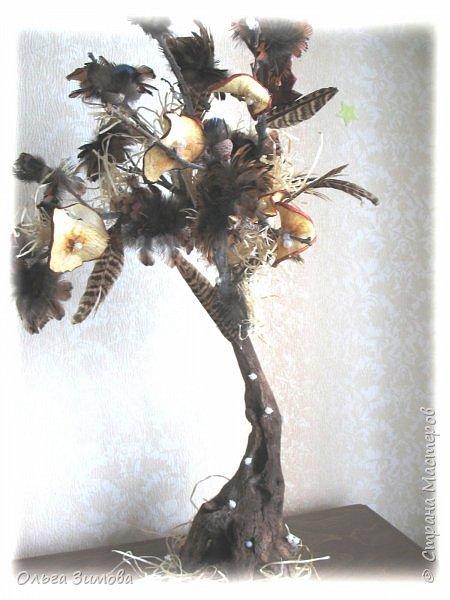 Давно хотела сделать небольшое деревце из старой коряги..Цветы из перев фазана и плюс украшение деревца- сушёные дольки яблочка. фото 8