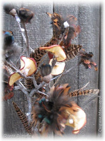 Давно хотела сделать небольшое деревце из старой коряги..Цветы из перев фазана и плюс украшение деревца- сушёные дольки яблочка. фото 6