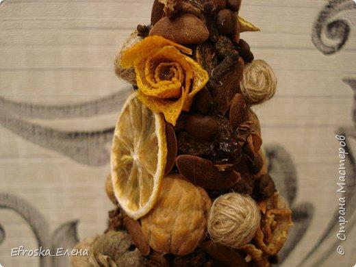 Вот и еще одна ёлочка у меня появилась. Всегда с интересом рассматривала подобные работы, наконец-то сделала свою (хотя сомневаюсь, что она у меня задержится). В качестве декора использовала скорлупки фисташек и грецкого ореха; косточки фиников, хурмы и арбуза; розочки и звездочки из кожуры мандаринов и сушеные дольки лимона; кофе, бадьян, гвоздика; клубочки из нитей мешковины и семена экзотических фруктов из Тайланда. фото 7