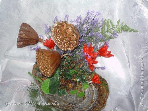 Рада приветствовать всех жителей нашей прекрасной Страны Мастеров! В предверии Нового года это, пожалуй, моя последняя работа. Делала эту композицию для своей любимой невестки. Использовала высушенный гриб- трутовик, высушенные коробочки лотоса и древовидных пионов, иск. зелень. фото 3