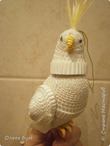 Это тоже колокольчик. Захотели сделать попугая, потому что  у них такой живёт дома. Даже фото своего любимца принесли.  И настоящие пёрышки (от линьки). Получился! И голову даже поворачивает как настоящий. фото 8