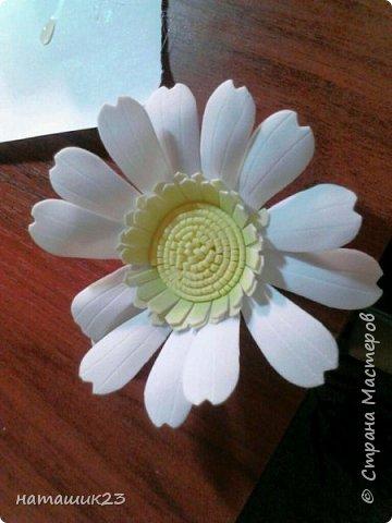 За основу этого цветочка я брала мк герберы Натальи Вознюк http://stranamasterov.ru/user/183288, но в своей ромашке я поменяла серединку и размеры. фото 23