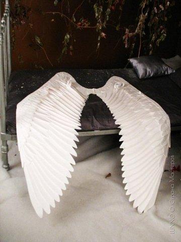 О том, как сделать крылья из бумаги... В последнее время актуальной темой для фотосъемок стали крылья. Нашла в интернете замечательные идеи с крыльями из сухих цветов и кленовых листьев. Ну, а нам хотелось самые обычные белые крылья ангела... Если располагают финансы, то можно закупить большие гусиные перья. Фотограф: Дарья Сивачук фото 17
