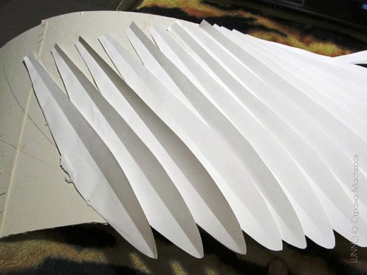 О том, как сделать крылья из бумаги...  В последнее время актуальной темой для фотосъемок стали крылья. Нашла в интернете замечательные идеи с крыльями из сухих цветов и кленовых листьев. Ну, а нам хотелось самые обычные белые крылья ангела...  Если располагают финансы, то можно закупить большие гусиные перья.  Фотограф: Дарья Сивачук фото 8