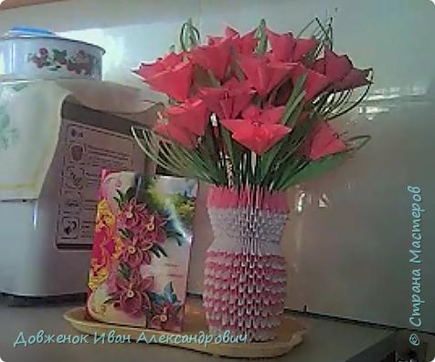 Добрый день, жители страны мастеров. У моей мамы вчера было день Рождения. И я сделал вот такой подарочек. Вазу с цветами и открытку в технике квиллинг.  ...Извиняюсь, за то что вчера не показал, вчера получилось лишь только загрузить мастер класс по изготовлению рождественского ангелочка, а потом уже возникли проблемки ........ Хочу сказать ОГРОМНОЕ спасибо, кто помог мне найти и мк цветочков и кто предложил другие варианты вазы  . Без вас нечего бы не было  ........ Вариантов цветов было очень много, вы мне предлагали сделать по схеме и по мк и по видео мк и т.п.    фото 15