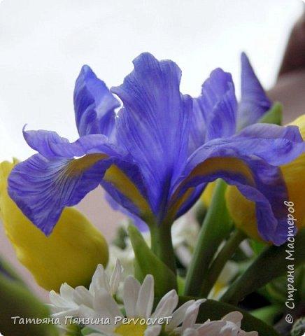 ... Изысканно- волшебные цветы Небесно - голубым огнем в саду пылают. Их нежные воздушные черты Изяществом своим поэтов вдохновляют.  Их листья - словно лезвия меча, Сражают строгостью и совершенством линий. И я стою, взволнованно шепча, Стихи об ирисе среди гвоздик и цинний.  Ты, ирис, - рыцарь голубых кровей, Стоишь один средь лезвий безмятежно, Храня в душе огонь любви своей, Любви таинственной и бесконечно-нежной ...  Ирис, выполнен из флористической полимерной глины, с многоцветной тонировкой. фото 3
