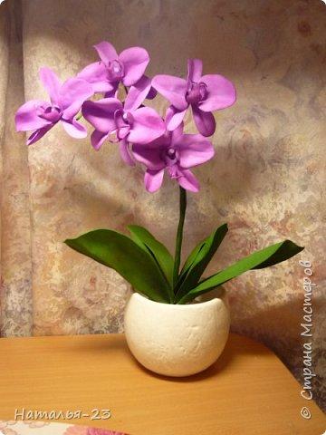 Новые орхидеи из фома... фото 1