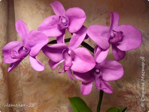 Новые орхидеи из фома... фото 2