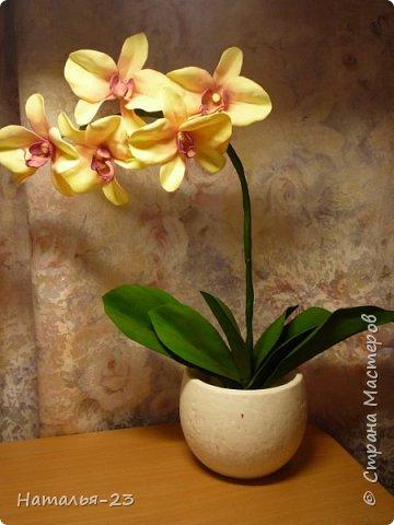 Новые орхидеи из фома... фото 3
