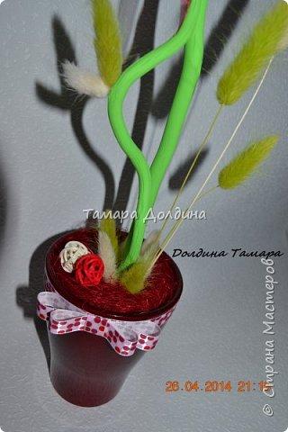 Высота 60см, диаметр кроны 22см. В работе использованы: органза флористическая, сухоцветы лагуруса, природное сизалевое волокно, ротанговые шары разных размеров, атласные ленты, ленты из органзы, декоративные вишни, ствол-корилиус, керамическое кашпо. фото 4