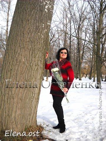 """Белые розы - подарок супруга. И конечно же у нас небольшая прогулка по зимнему парку с фотосессией моих вязаных вещей и цветами. К зимним холодам связала теплую тунику из пряжи Rainbow Alpaca Fancy. Туника связана спицами 3.5, ушел моточек пряжи - 350 г. Техника вязания: лицевая гладь, вязание регланом от горловины без швов. Приятного просмотра под музыку """"Ласкового мая"""". фото 2"""