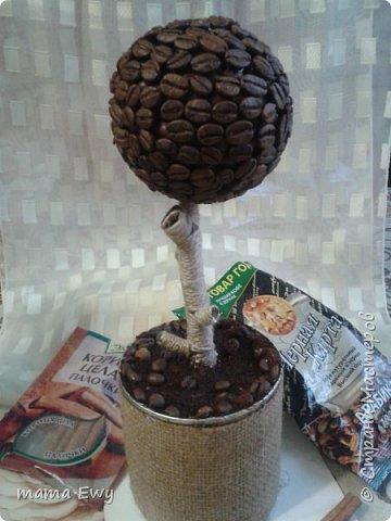 топиарий. кофе фото 1
