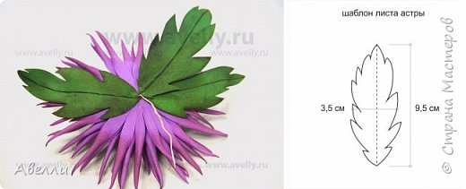 Вот такую прекрасную астру из корейского фоамирана мы будем сегодня делать. фото 8