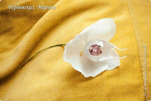 Мастер-класс по созданию прекрасной орхидеи с конфетами. фото 9