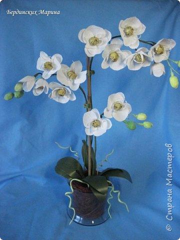 Мастер-класс по созданию прекрасной орхидеи с конфетами. фото 1